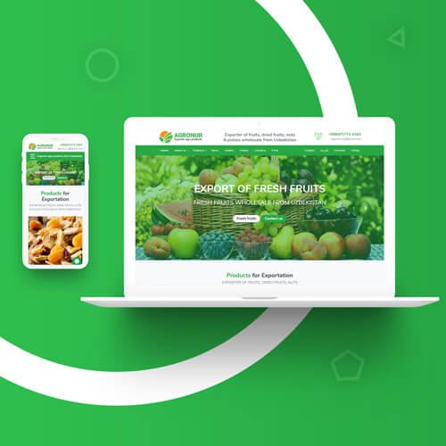 Разработка дизайн сайта и создание сайта в Ташкенте для agronur.uz